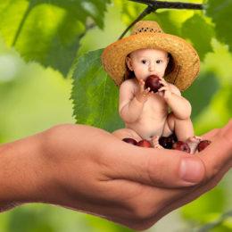 Fotografie dítěte sedícího v ruce, které jí ovoce či zeleninu.