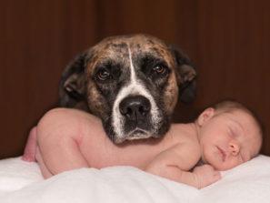 fotografie miminka se psem jak spí