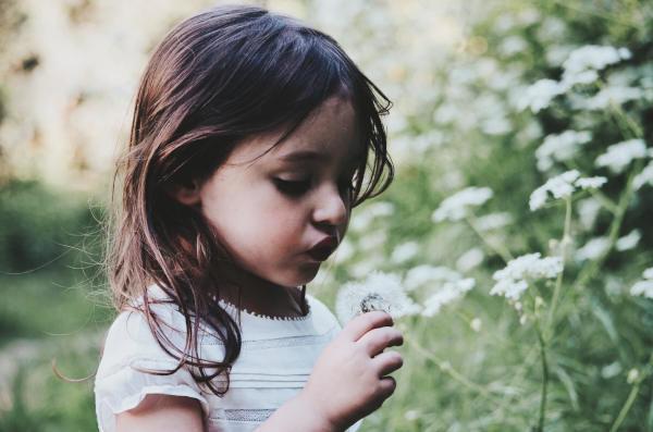 malá holčička fouká do odkvětlé pampelišky při dětské bojovce